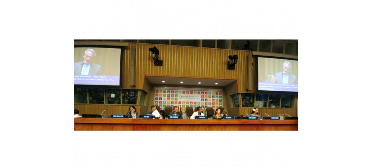TURKMENISTAN PRESENTED TO THE WORLD COMMUNITY ITS VOLUNTARY NATIONAL REVIEW ON THE IMPLEMENTATION OF THE SDGS